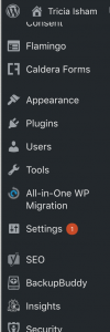 Image of WordPress sidebar to show where to find backup plugin