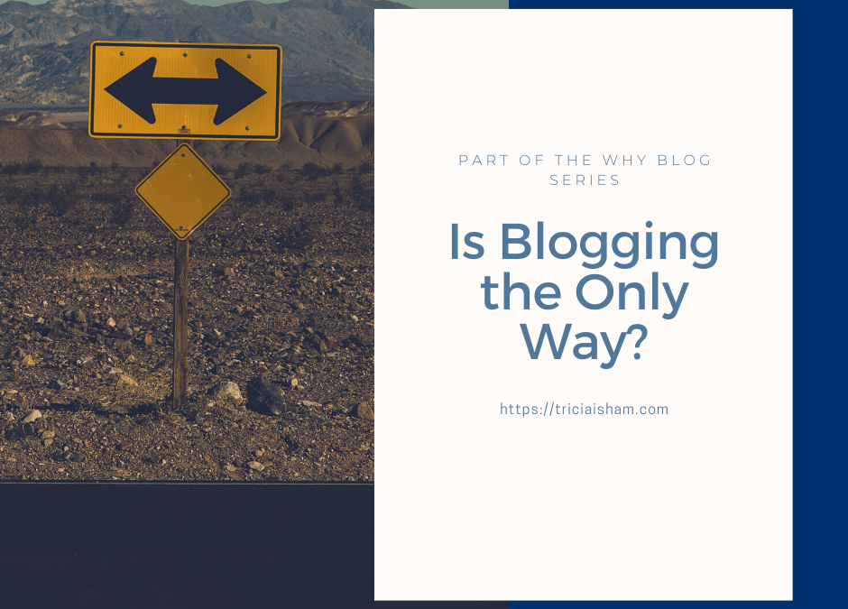 Is Blogging the Only Way?