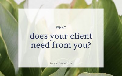 What does your ideal client need from you?