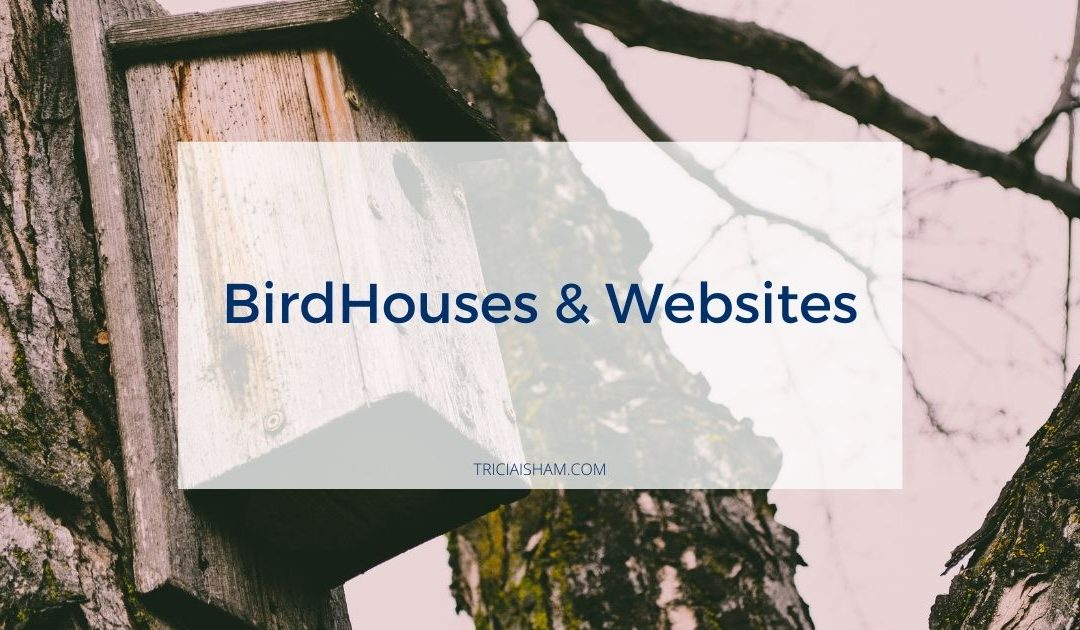 Bird Houses and Websites