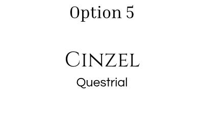 font pairing option 5